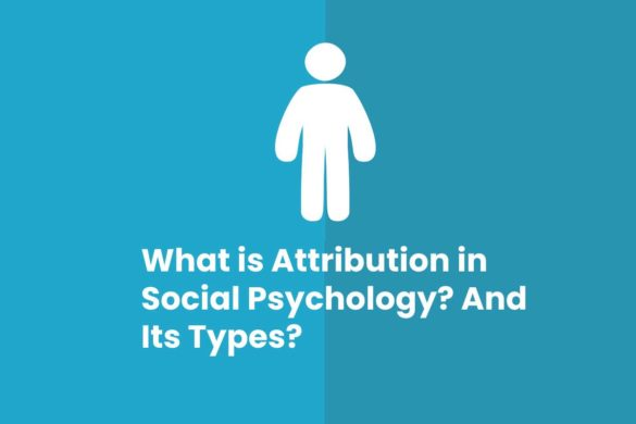 What is Attribution in Social Psychology? And Its Types?